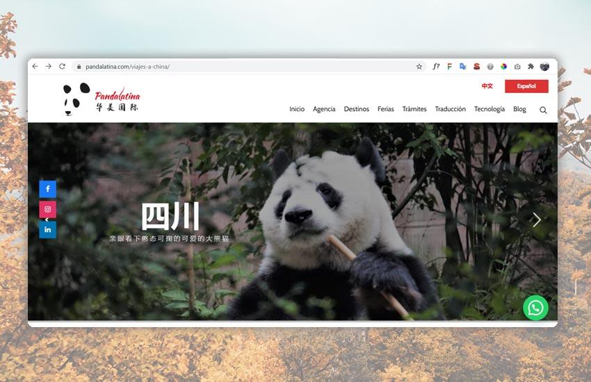 diseño de sitios web villa de leyva